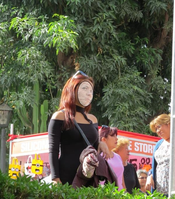 Festisabores Arequipa 2016
